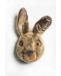 Wild & Soft - Trophée lièvre brun Lewis - Tête d'animal